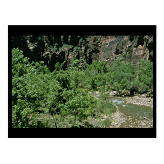 Virgin River at Zion National Park Post Card