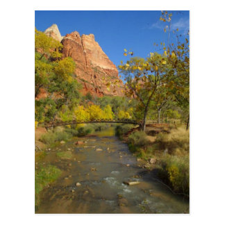 Virgin River In Zion Great Colors In The Fall Ther Post Cards