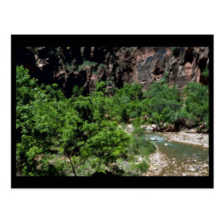 Virgin River Zion National Park Post Card