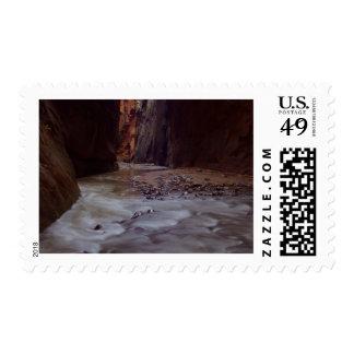 Virgin River Zion National Park Stamps