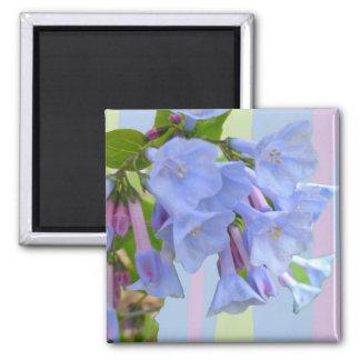 Virginia Bluebells Wildflower Magnet