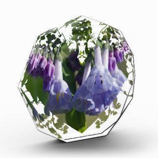 Virginia Bluebells Wildflowers Award