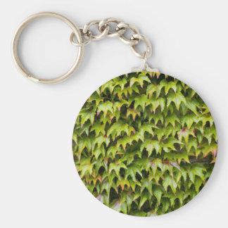 Virginia Creeper Keychain