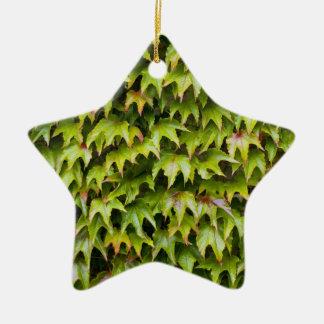 Virginia Creeper Ornament