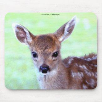 Virginia Deer Fawn Baby Animal Wildlife Art zazzle_mousepad