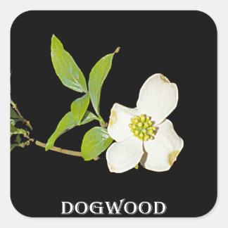 Virginia Dogwood Square Sticker