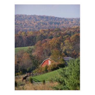 Virginia en la caída tarjeta postal