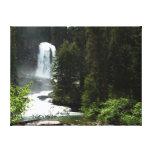 Virginia Falls at Glacier National Park Canvas Print