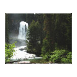 Virginia Falls Canvas Print