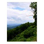 Virginia Landscape Postcard