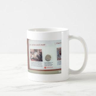 Virginia opossum (Didelphis virginiana), marsupial Coffee Mug