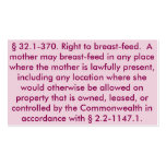 """Virginia """"Right to Breastfeed"""" Cards Double-Sided Standard Business Cards (Pack Of 100)"""