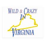 Virginia - salvaje y loca postal
