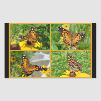 Virginiensis americano de señora Butterfly - de Rectangular Pegatina