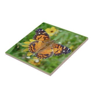 Virginiensis americano de señora Butterfly - de Va Azulejo Cuadrado Pequeño
