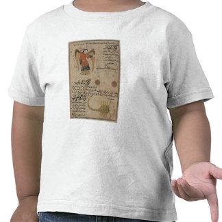 Virgo Libra and Scorpio T Shirts
