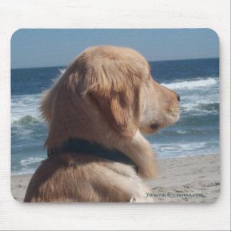 Virrey en la playa Mousepad