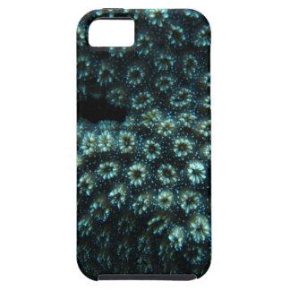 Viruela de lago iPhone 5 carcasa