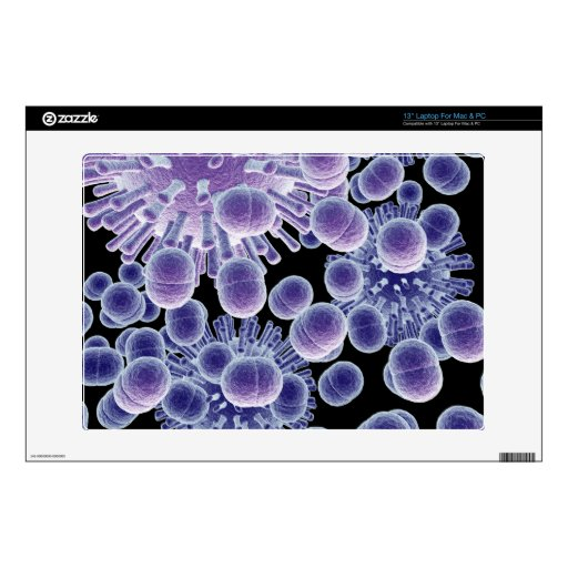 virus de las bacterias 3d calcomanías para 33cm portátiles