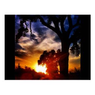 Visalia Sunset Postcard