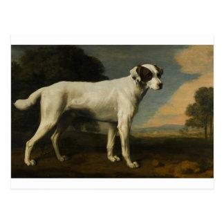 Viscount Gormanston's White Dog by George Stubbs Postcard