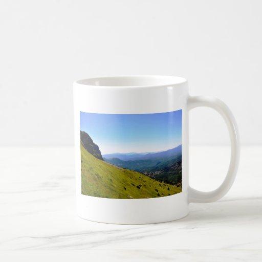 Visibilidad total taza