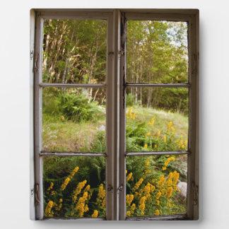 Visión a través de la ventana vieja placas de plastico
