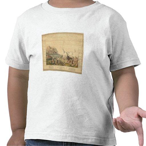 Visión comparativa camiseta