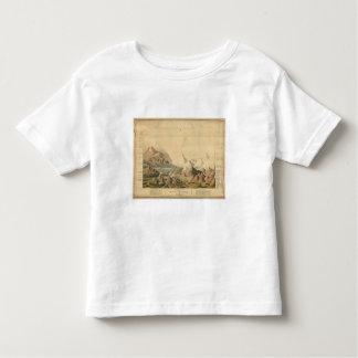 Visión comparativa tshirt