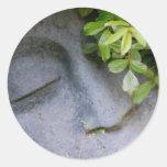 Vision de mi jardín pegatinas redondas