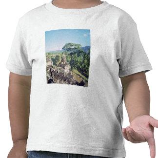 Visión desde el monumento que muestra la camiseta