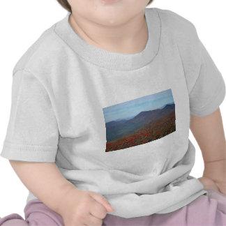 Visión desde la montaña escarpada de la bóveda camisetas