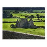 Visión desde la roca de Cashel, Irlanda Tarjetas Postales