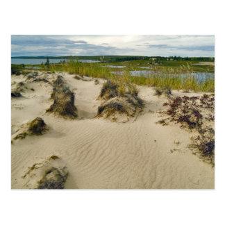Visión desde una cumbre arenosa de los lagos y de tarjeta postal
