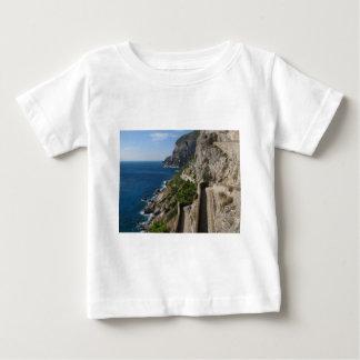Visión desde vía Krupp en la isla Capri Polera