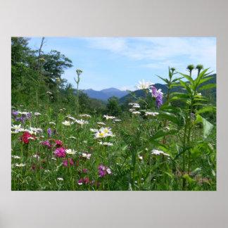 Visión maravillosa para las flores poster
