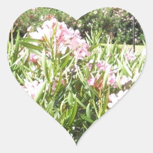 Visión maravillosa calcomanía de corazón personalizadas