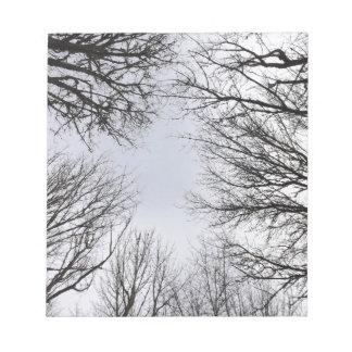 Visión que mira a través de árboles libreta para notas