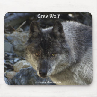 """Vision Quest"" Grey Wolf Mousepad"