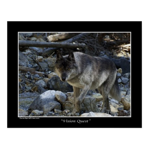 """""""Vision Quest"""" Grey Wolf Poster"""