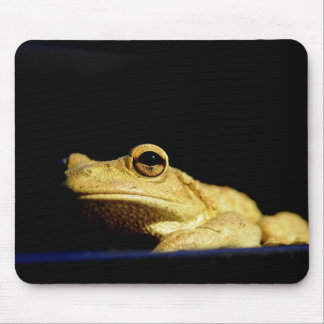 Visionary Mouse Pad