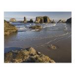 Visiónes costeras, Bandon, Oregon Postales