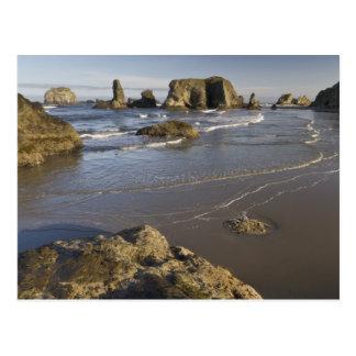 Visiónes costeras, Bandon, Oregon Tarjeta Postal