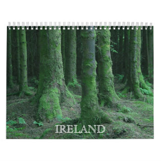 Visiónes desde el calendario de Irlanda