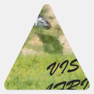 Visit Africa Triangle Sticker