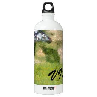 Visit Africa Water Bottle
