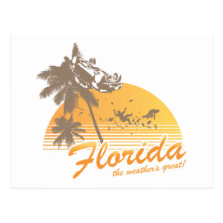 Visit Florida, the Weather's Great - hurricane Postcard