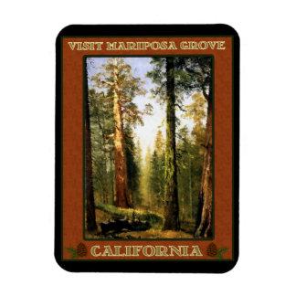 Visit Mariposa Grove Rectangular Photo Magnet