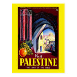 Visit Palestine The Land Of The Bible Postcard