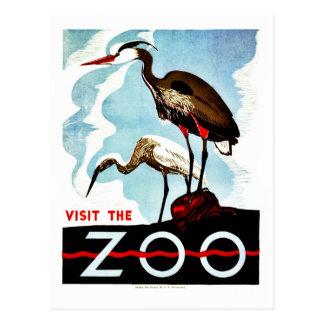 Visit the Zoo, herons, vintage retro WPA Postcard